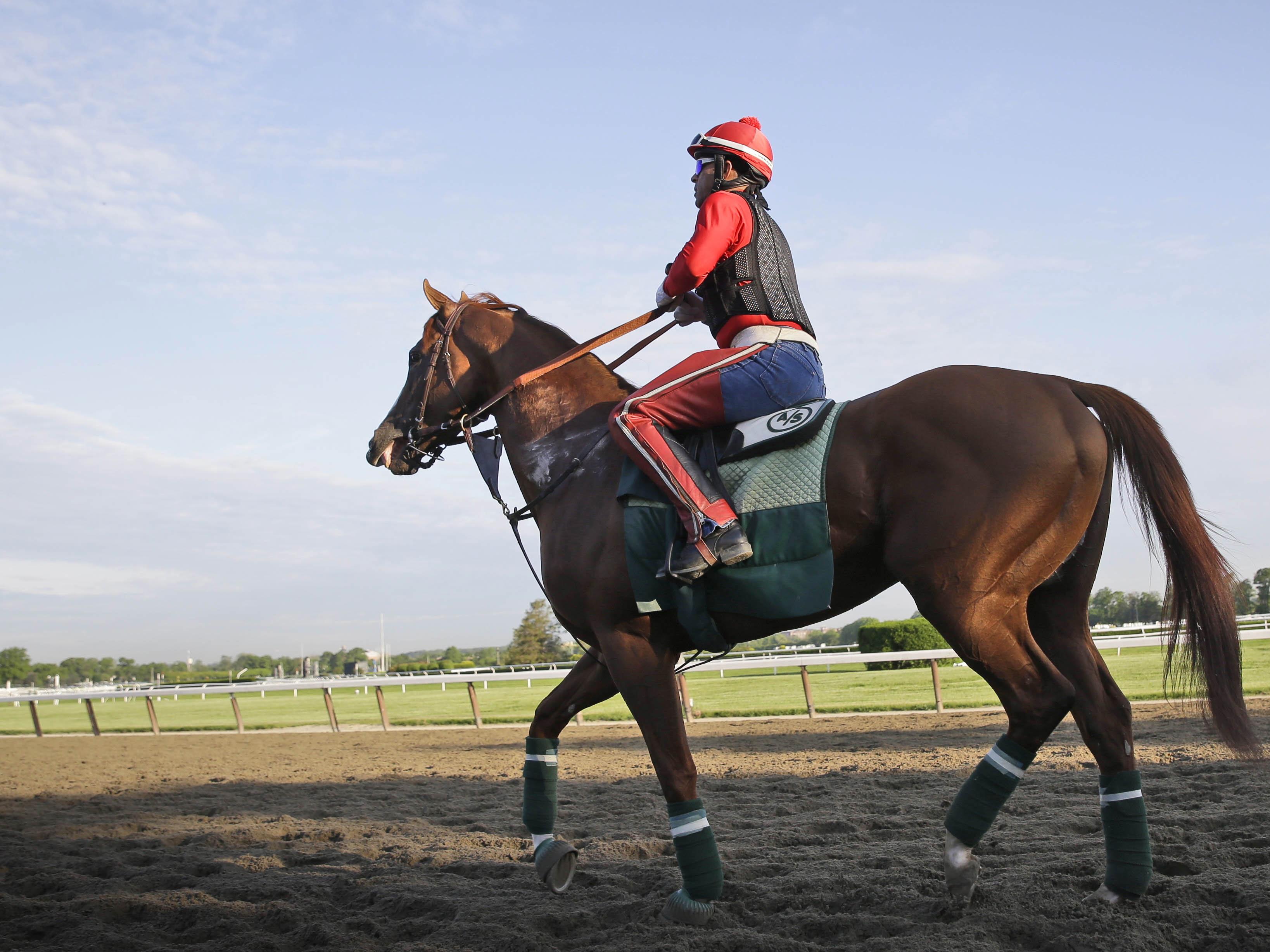 Belmont California Chrome Horse Racing