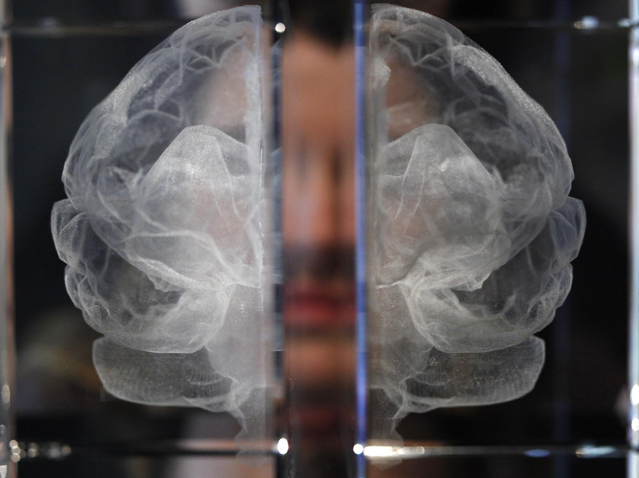 APTOPIX Britain Brains Mind as Matter