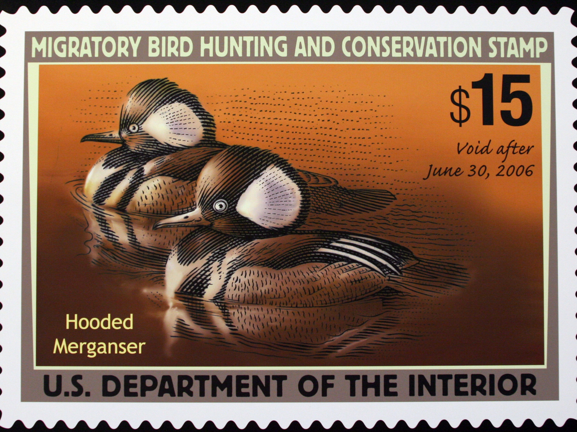 DUCK STAMP