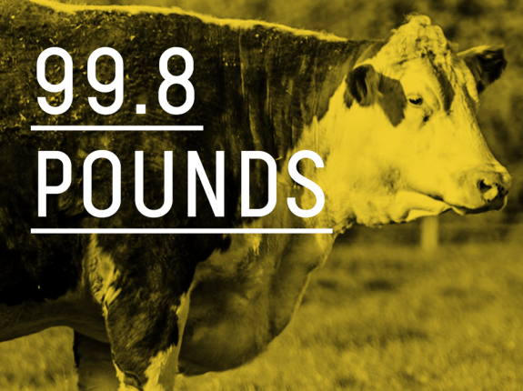 99.8 pounds