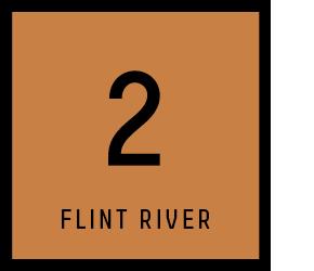 FLINT_Chapter Squares_V22[1]
