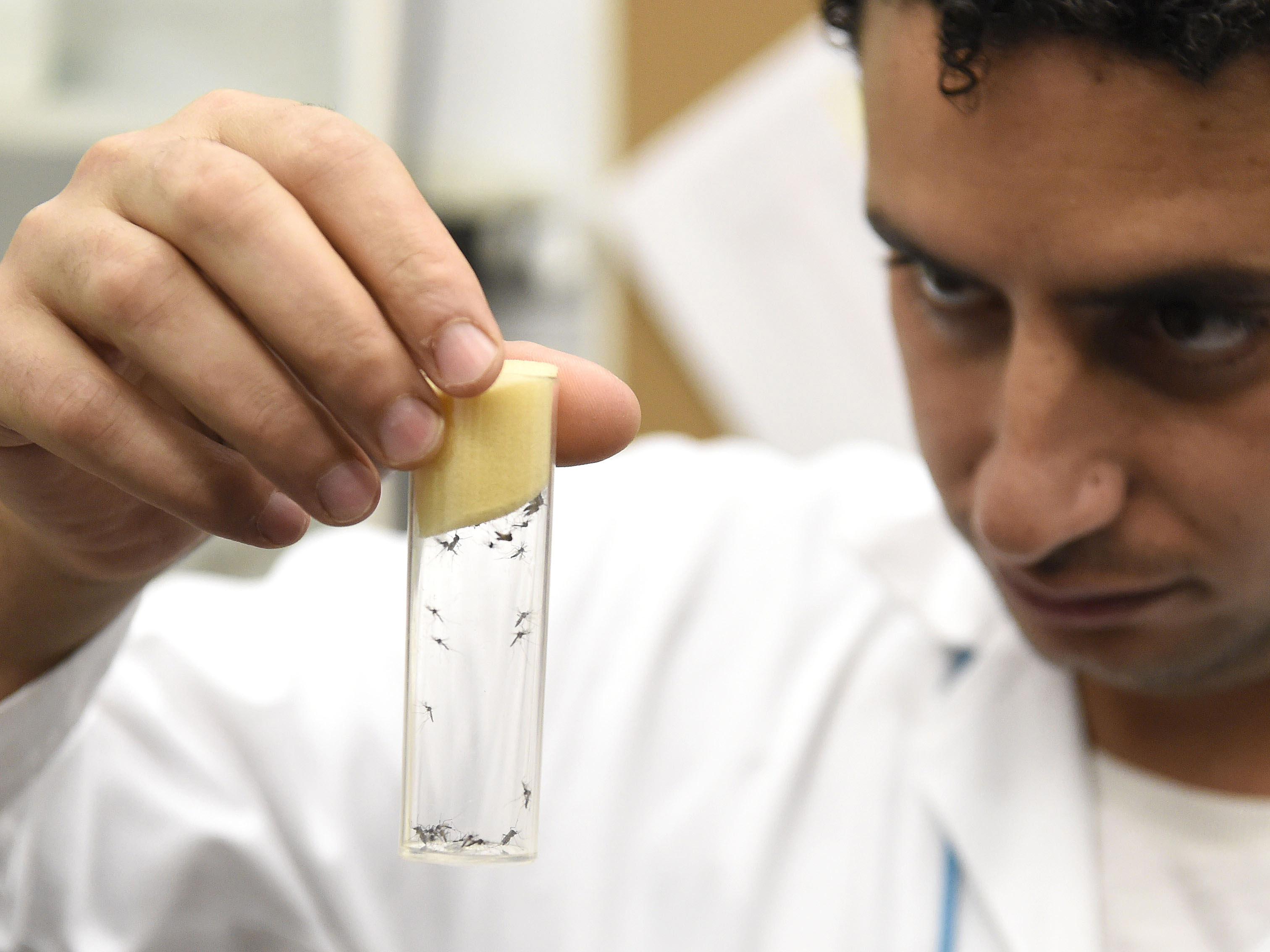 AUSTRIA-SCIENCE-HEALTH-IAEA-ZIKA