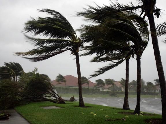 HURRICANE WILMA FLORIDA