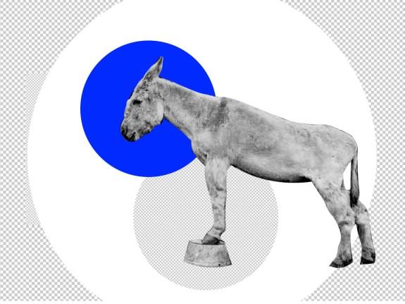 partytime-democrat-4×3