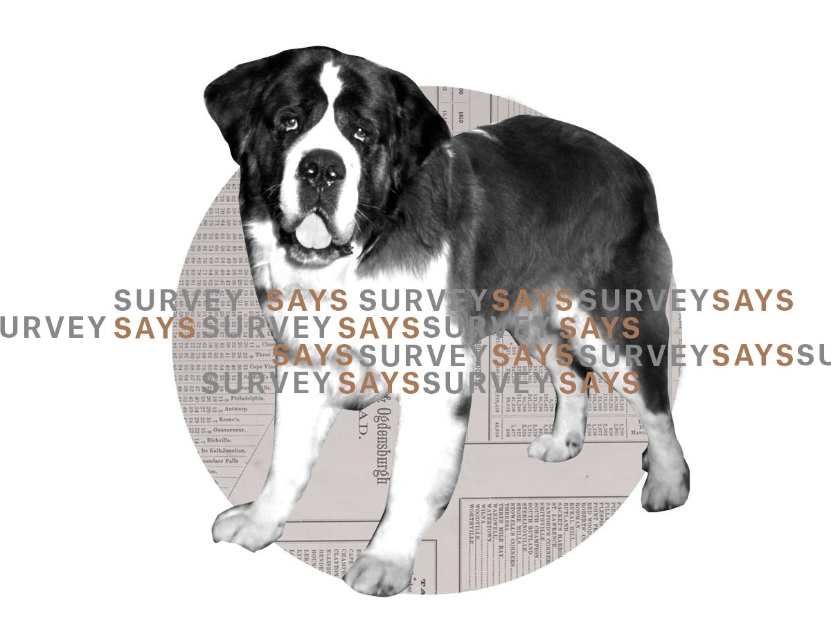 SURVET-SAYS-POOP4x3