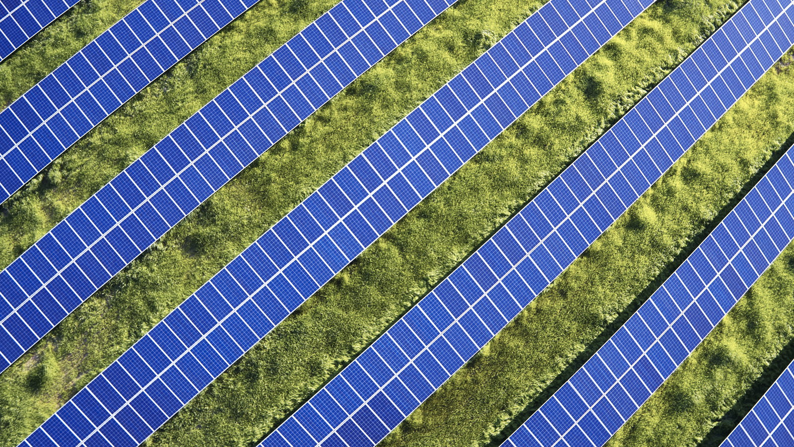 USA, North Carolina, Low-level aerial photograph of solar panels in a solar farm