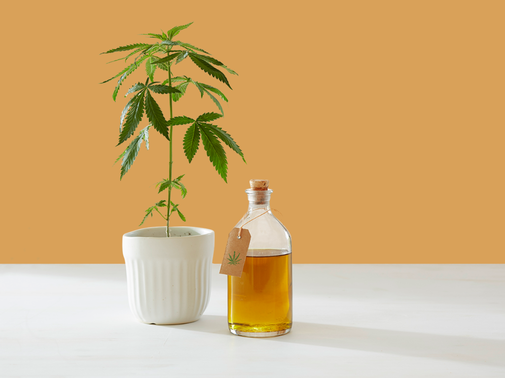 Does CBD Really Do Anything? | FiveThirtyEight