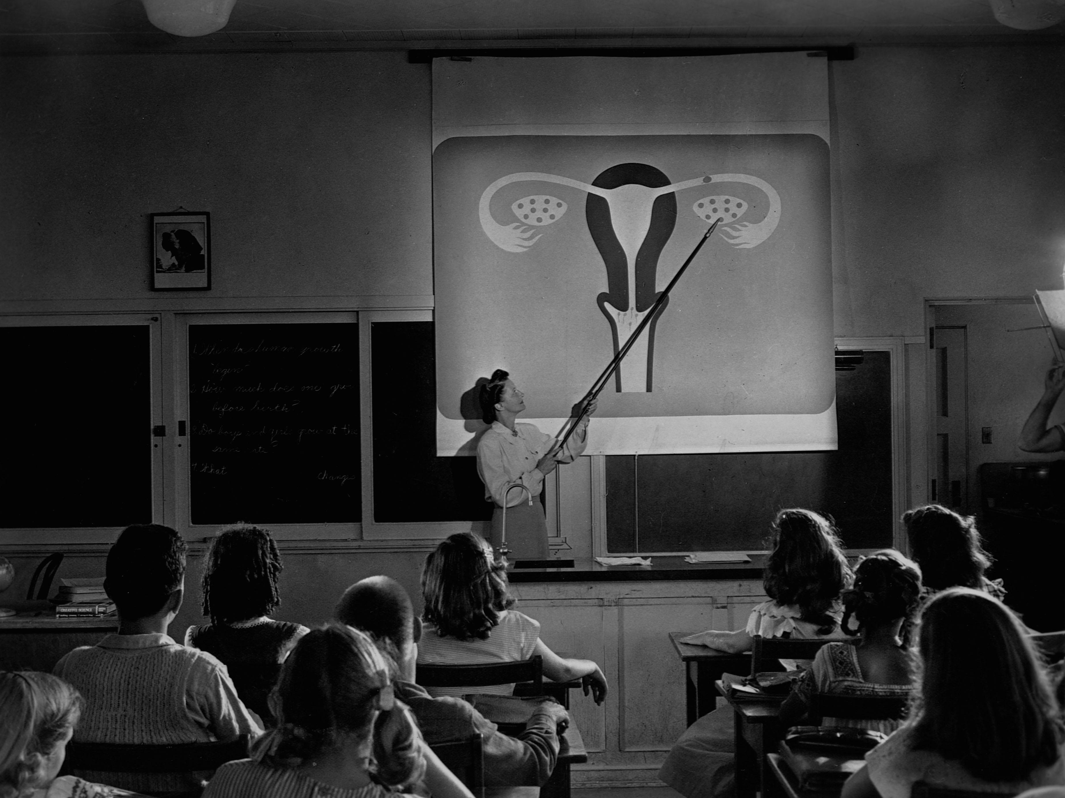 Teacher Explaining Female Reproductive System