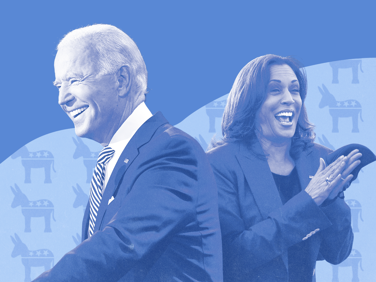 The Best 2020 Election