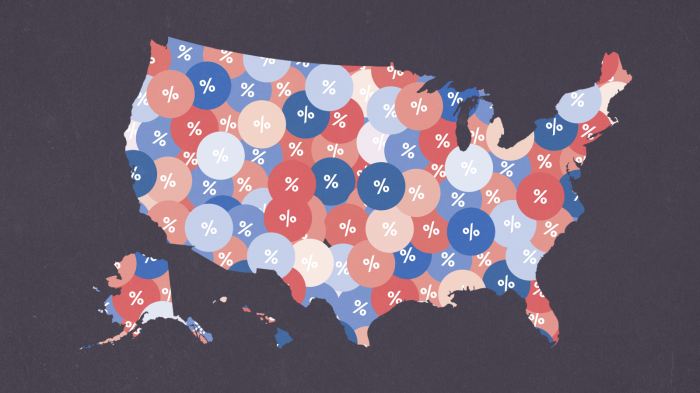 Why Was The National Polling Environment So Off In 2020?