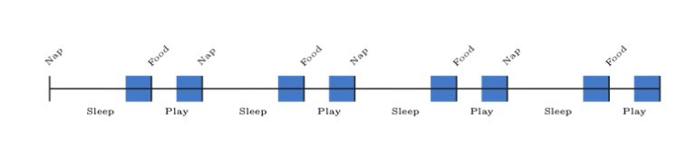 Tape diagram showing 3-hour cycles. Within each cycle, the 30 minutes prior to the 2-hour mark is shaded, and the 30 minutes prior to the 3-hour mark is also shaded.